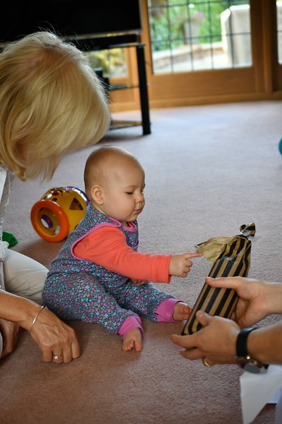 Daisy babysitting Sept 2017 013.JPG