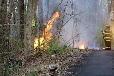 Budd Lake Firefighters Knock Down Brush Fire