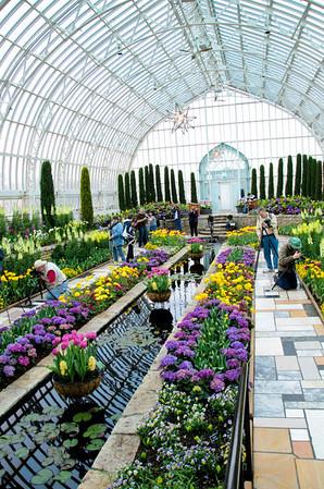 Como Park Conservatory 2011