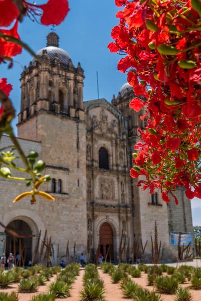 Oaxaca-Centro-7.jpg