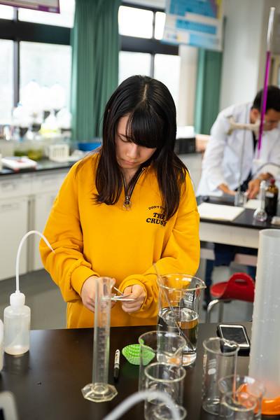 Grade 12 Science-Lab Work-ELP_1981-2018-19.jpg