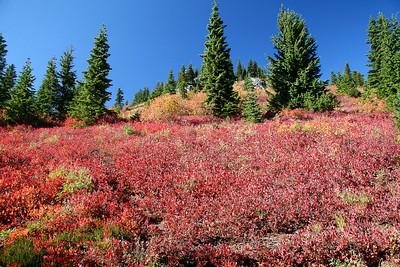Sawyer Peak 10-2012
