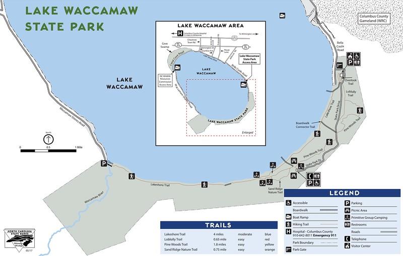 Lake Waccamaw State Park