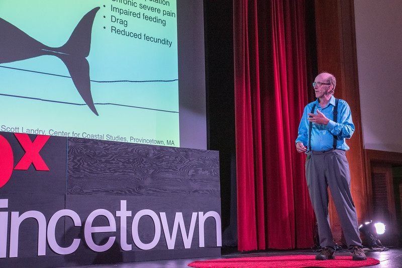 TEDx PTown Dress Rehearsal Day-41.jpg