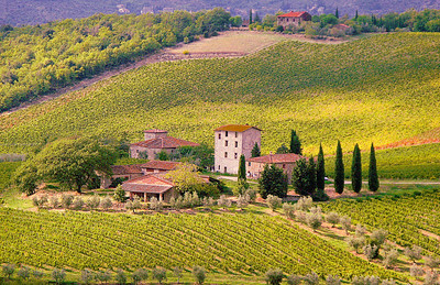 View of Tuscan Farmhouse from Castillo di Brolio