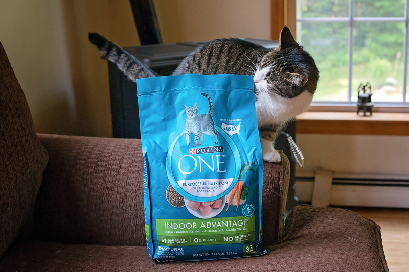 Purina ONE For dogs and cats-5-2.jpg