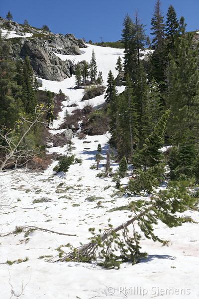 Avalanche runout