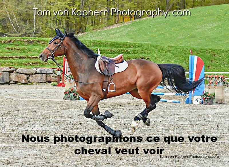 Tom von Kapherr Photography--2.JPG
