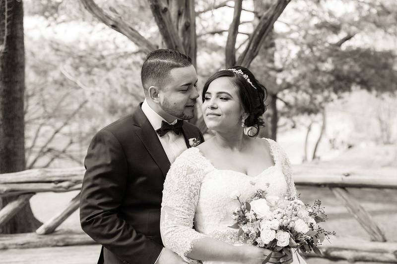 Central Park Wedding - Ariel e Idelina-163.jpg