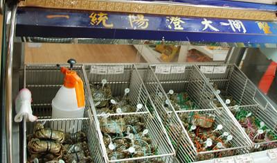 China, Fall 2009
