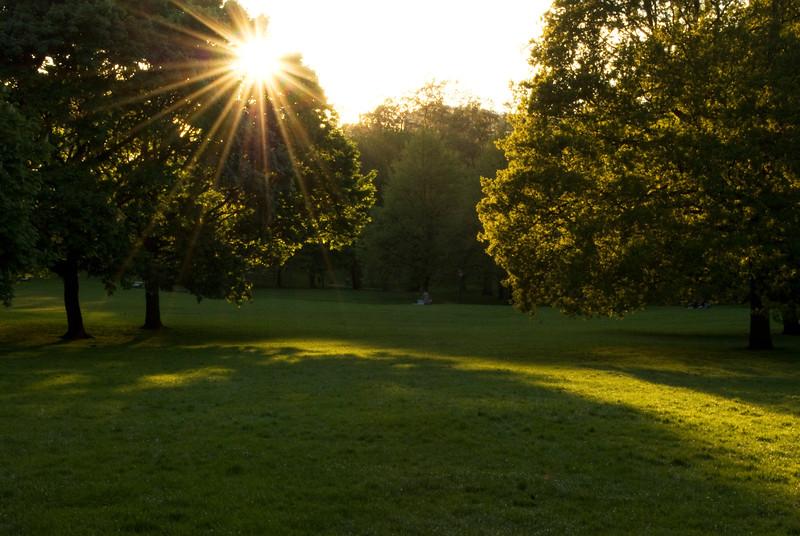 greenpark sun ray.jpg