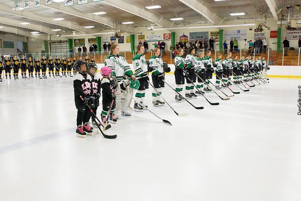 2016-17_LDC_Girls_Hockey