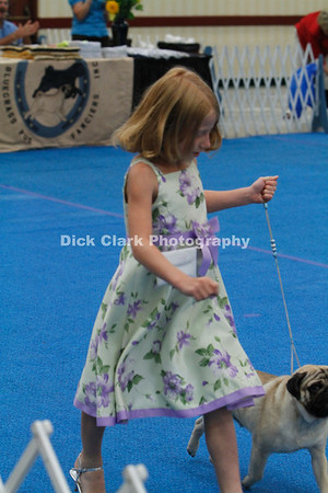 Bluegrass Pug Fanciers Monday Regular Class Dogs