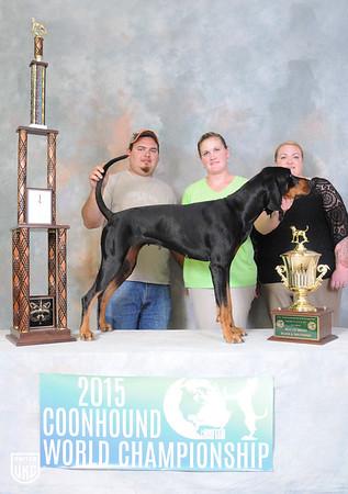 Coonhound World Championship