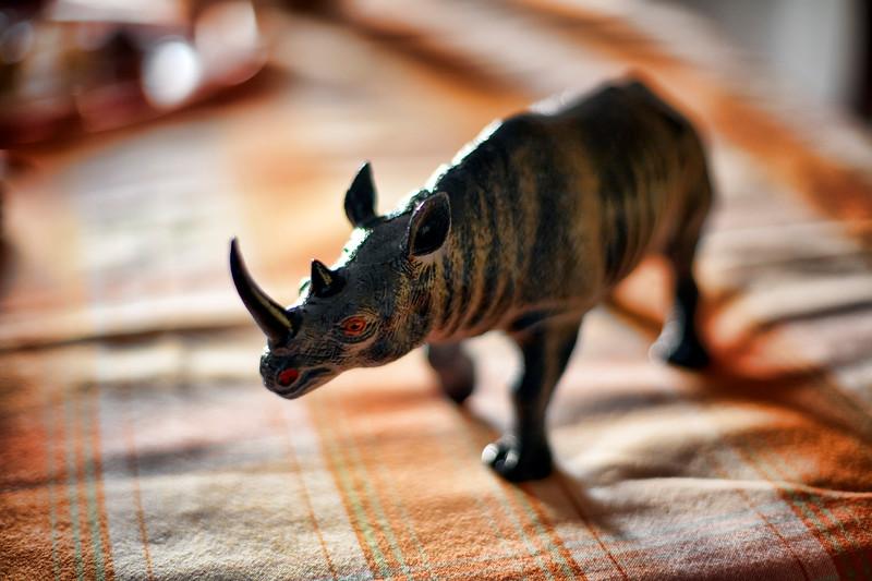 Rhinoceros figure on a table, Seville, Spain