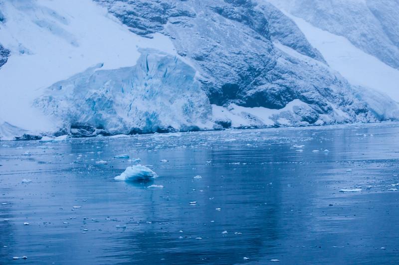 Antarctica 2015 (51 of 99).jpg