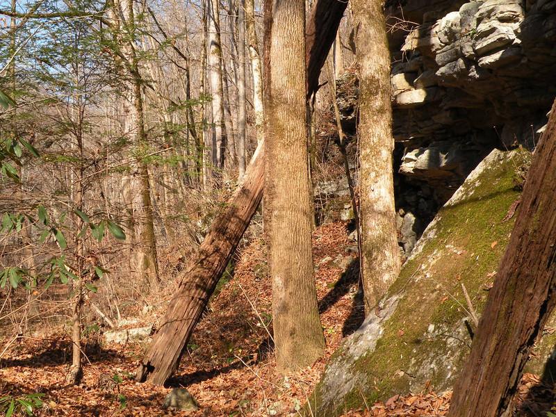 River Trail 180.jpg