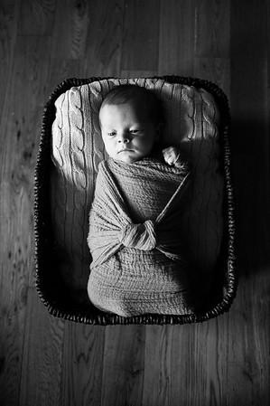 Walker | Newborn