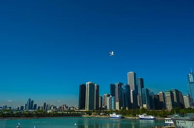 Chicago River Architectual Tour