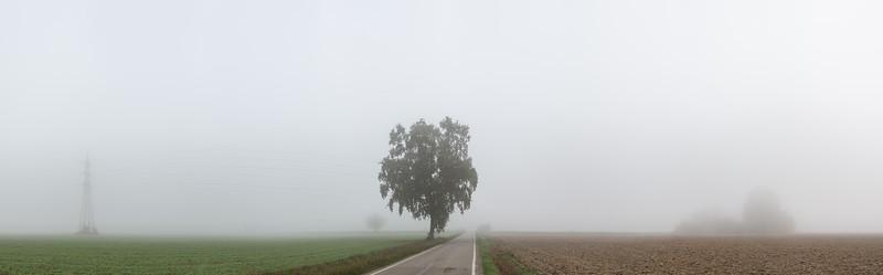 Via Lunga Sottobosco - Crevalcore, Bologna, Italy - October 23, 2019