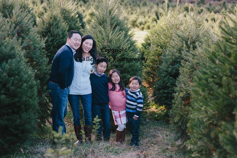 Kim holiday-24.jpg