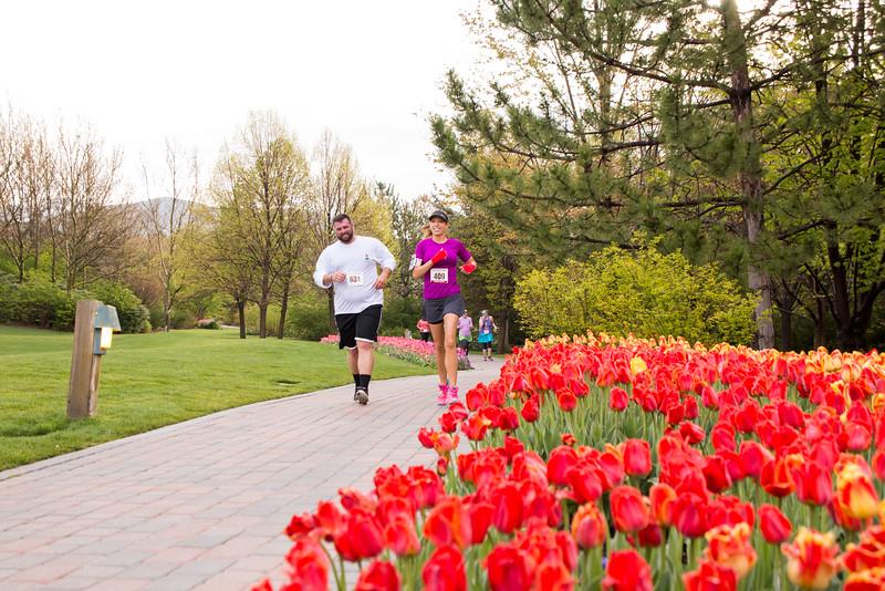 TulipFestHalfMarathon_Runners_Gardens_2015_IMG_5248.jpg