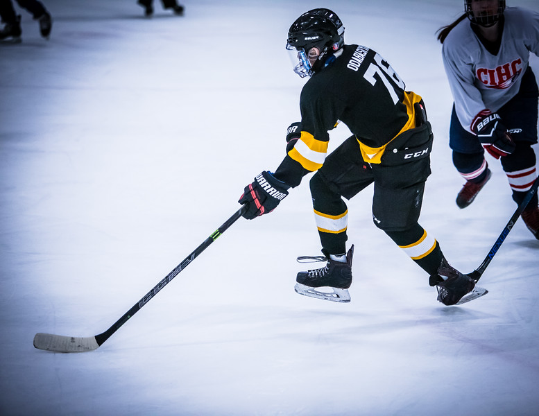 Bruins2-490.jpg