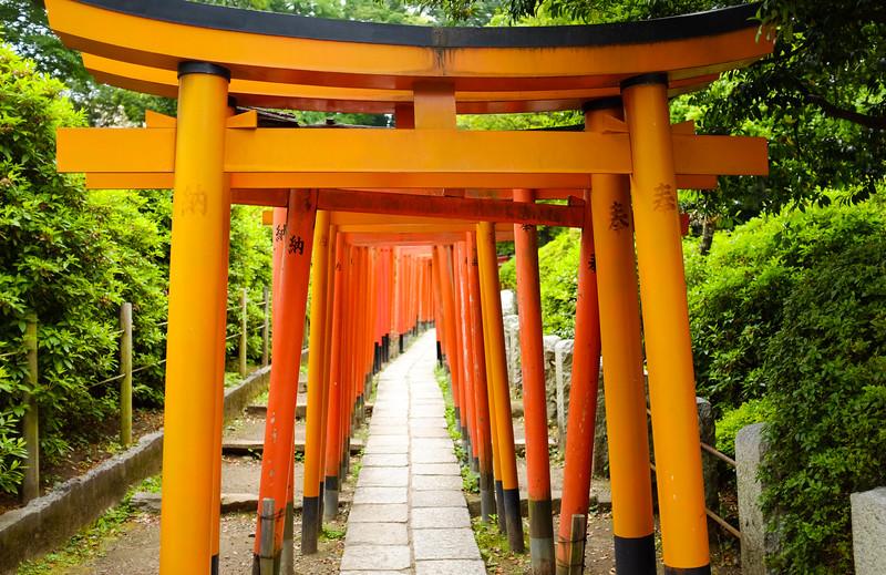 Japan_May2016_Tokyo-3.jpg