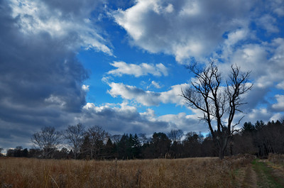 Pennypack Ecological Preserve