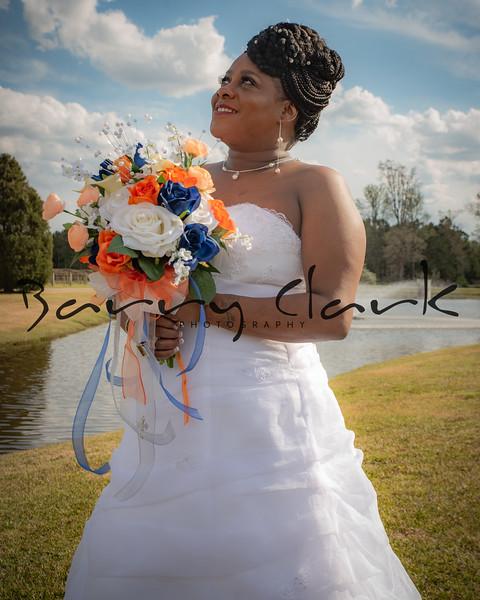 Ferguson Wedding Reception