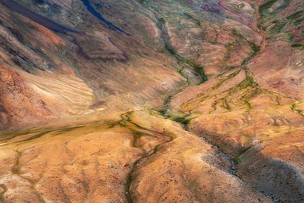 Colors of Ladakh #6