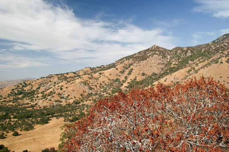 Terrain near Milo, CA