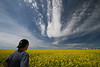 Big Skies - If there is one thing that I love about Southern, Alberta in the summer time, its the endless miles of yellow canola fields. I shot this photo near Irricana, Alberta under that big skies with the farmstead off in the distance. I stepped into the frame to give scale to the scene - Sorry!