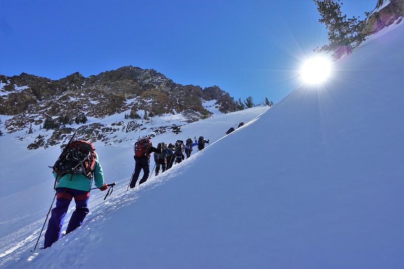 International Alpine Guides