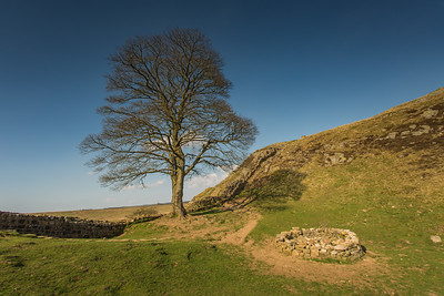 Hadrian's Wall - Sycamore Gap