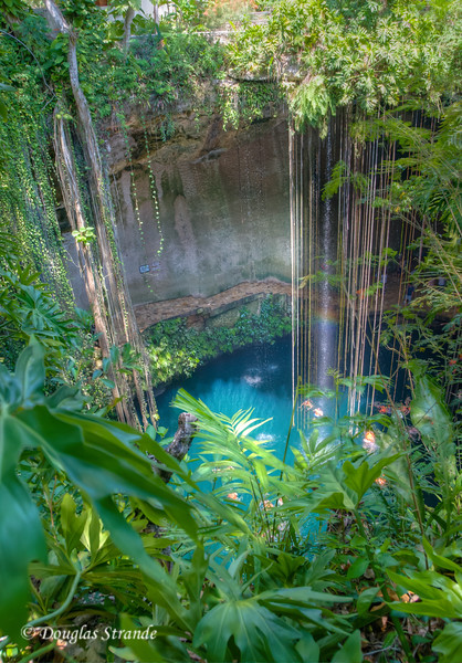 A cenote....the limestone roof over an underwater river has collapsed to create a popular swimming hole and tourist attraction.