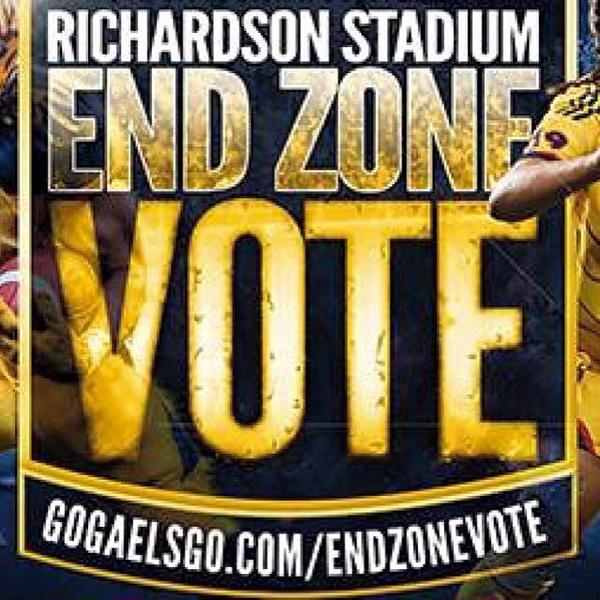 Vote for the End Zone Design