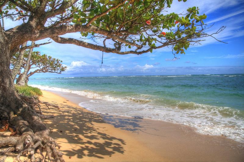 Leeward, Oahu, Hawaii, USA