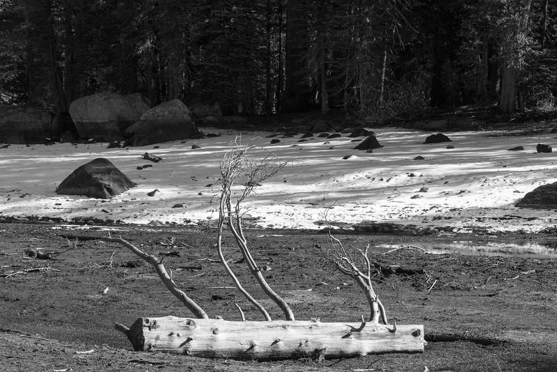 20171021-Lake Alpine-1744.jpg