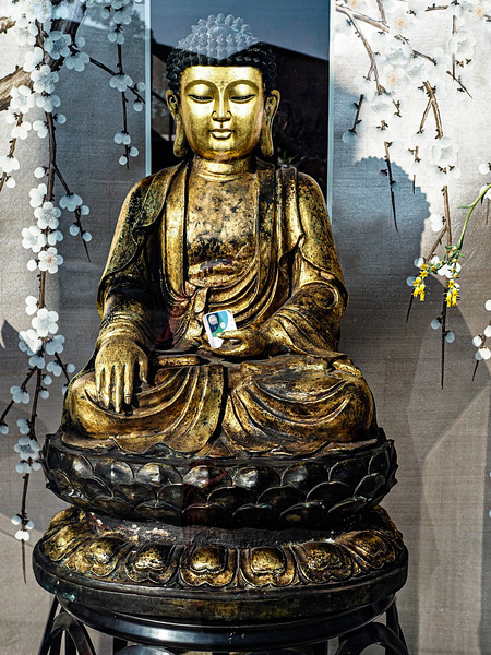 Create a peaceful environment in your home and/or office with a the presence of buddha…a symbol of peace, truth, love and wisdom.