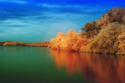 Infrared Photographs