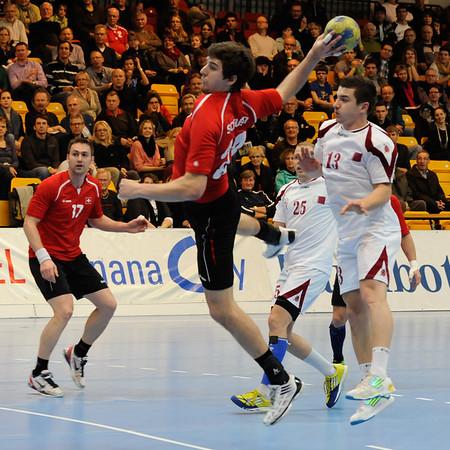 Handball 2012/2013
