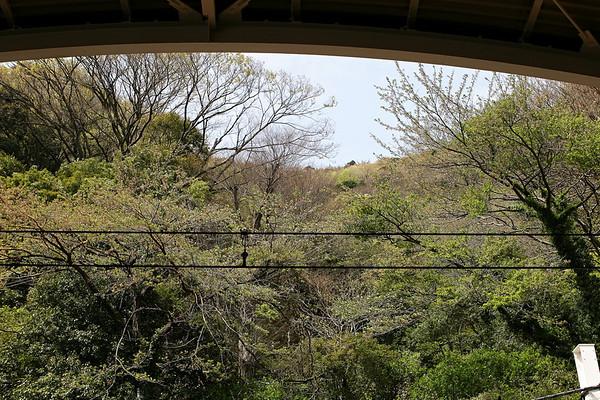 1. Drove to Odawara - Hakone Tozan Railway to Gora