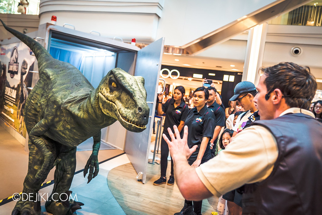 Universal Studios Singapore Park Update - Jurassic World Explore and Roar roadshow at Plaza Singapura featuring velociraptor Val and trainer Wyatt