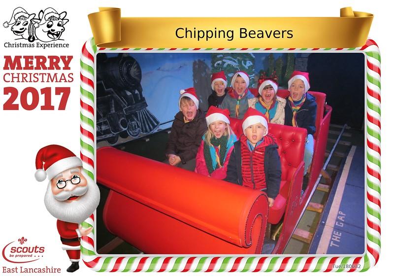 180632_Chipping_Beavers.jpg