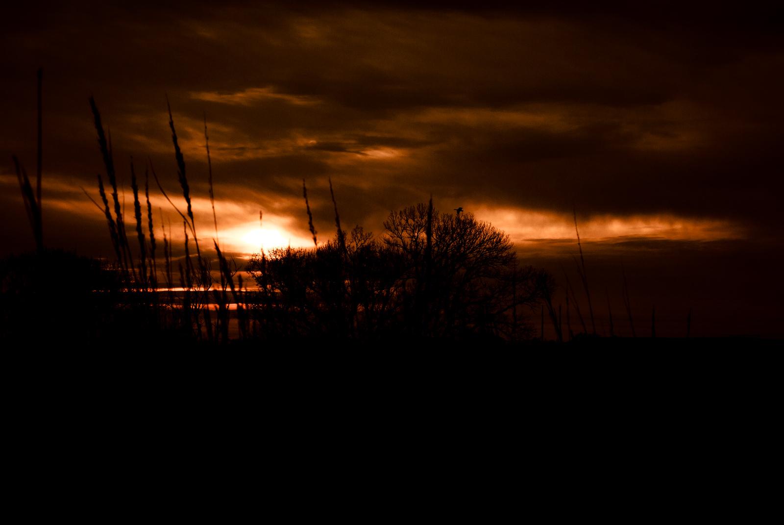 October 29, 2012 <br /> A slightly enhanced Nebraska sunset.