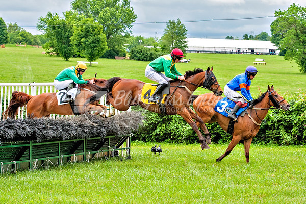 49th High Hopes Steeplechase - 2017