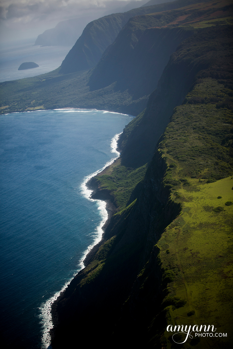 hawaii_amyannphoto_91_1