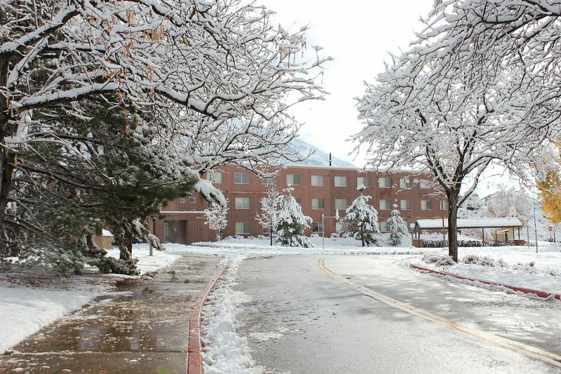Snowy_Morning_11_10_2012_3312.JPG