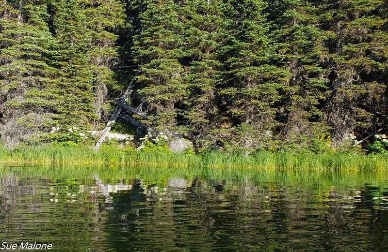 07-16-2020 Hosmer Lake Kayak-3.jpg